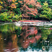 Amazing Fall Foliage Along A River In New England Poster