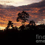 Amazon Sunset Poster