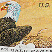 American Bald Eagle Vintage Postage Stamp Print Poster