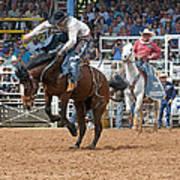 American Cowboy Riding Bucking Rodeo Bronc II Poster