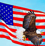 American Flag With Bald Eagle Poster