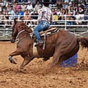 American Rodeo Female Barrel Racer White Blaze Chestnut Horse IIi Poster