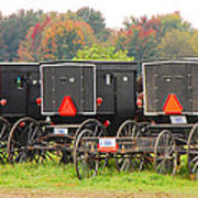 Amish Buggies 2 Poster