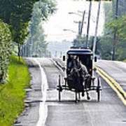 Amish Buggy In Lancaster County Pa. Poster
