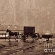 Amish Horse And Buggy With Wagon Bw Poster