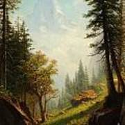 Among The Bernese Alps Poster