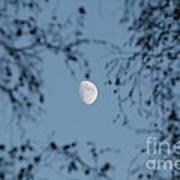 An October Moon Poster