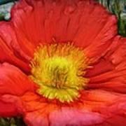 Ancient Flower 4 - Poppy Poster