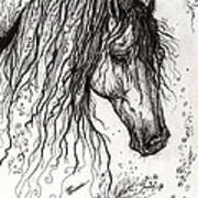 Andalusian Horse Drawing 2 Poster