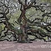 Angel Oak Digital Art Poster