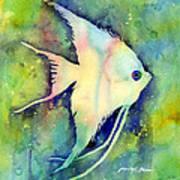 Angelfish I Poster