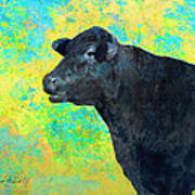 Animals Cow Black Angus  Poster by Ann Powell