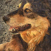 animals - dogs - Faithful Friend Poster