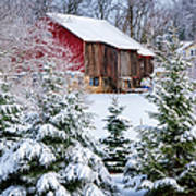 Another Wintry Barn Poster