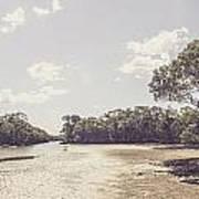 Antique Mangrove Landscape Poster