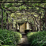 Antique Pergola Arbor Poster