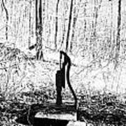 Appalachian Well Pump Poster