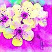 Apple Blossoms In Magenta -  Digital Paint Poster