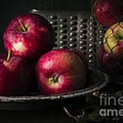Apple Harvest Poster