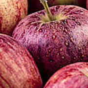 Apples 02 Poster