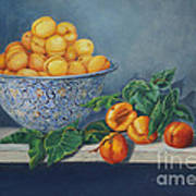 Apricots And Peaches Poster by Enzie Shahmiri