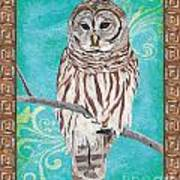 Aqua Barred Owl Poster