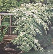 Arbor Passage Poster
