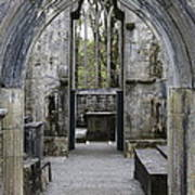 Archway Muckross Abbey Poster