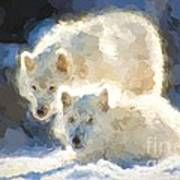 Arctic Wolves - Painterly Poster