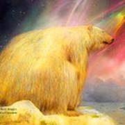 Arctic Wonders Poster
