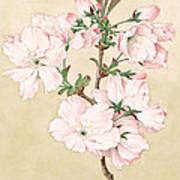 Ariake - Daybreak - Vintage Japanese Watercolor Poster