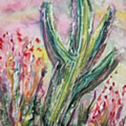 Arizona Desert Poster by M C Sturman