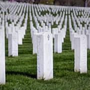Arlington National Cemeterey Poster by Susan Candelario