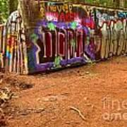 Art Along The Cheakamus River Poster
