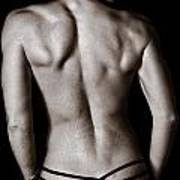 Art Of A Woman's Back Muscles  Poster