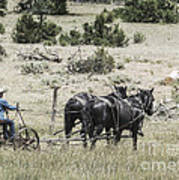Art Of Horse Plowing Poster