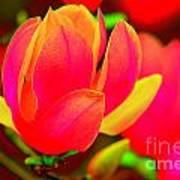 Artdeco Flower Poster