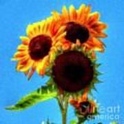 Artful Sunflower Poster