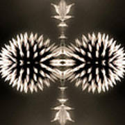 Artistic Flower Abstract Poster