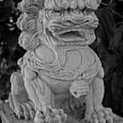 Asian Dog Poster