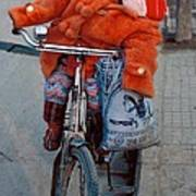 Asleep On A Bicycle Poster