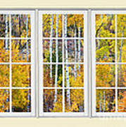 Aspen Tree Magic Cream Picture Window View 3 Poster by James BO  Insogna