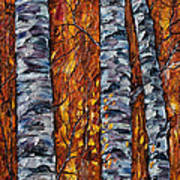 White Trees  Original Oil Painting  Poster
