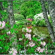 Asticou Azalea Garden Poster