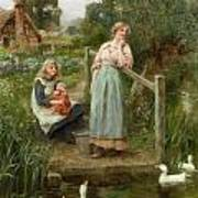 At The Duck Pond Poster