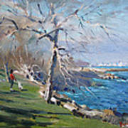 At The Park By Lake Ontario Poster
