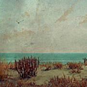 Atlantic City Seagull Poster