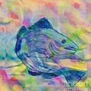 Atlantic Codfish Digital Color Poster