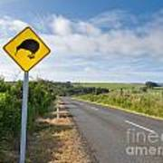 Attention Kiwi Crossing Roadsign At Nz Rural Road Poster