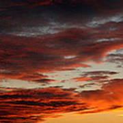 Audubon Sunset Light Poster
